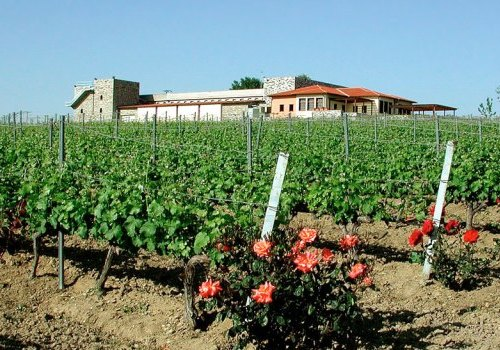 Gerovasileiou winery